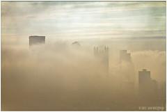 Foggy Morning, Pittsburgh