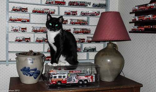 Tux Sitting on Ladder 10