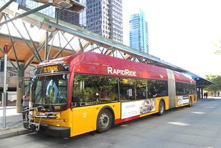 Hybrid Electric Rapid Ride Tranist Bus at Bellevue Transit Center WA