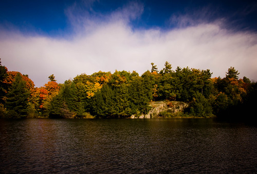 autumn colors leaves sunshinegatineauparklakewaterforestnaturetrees