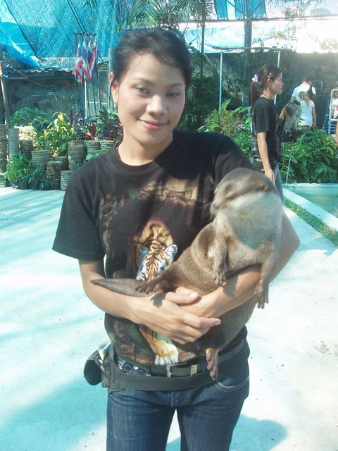 201002220675_girl-with-otter