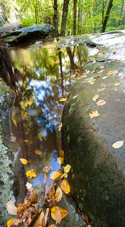 Laurel Falls landscape