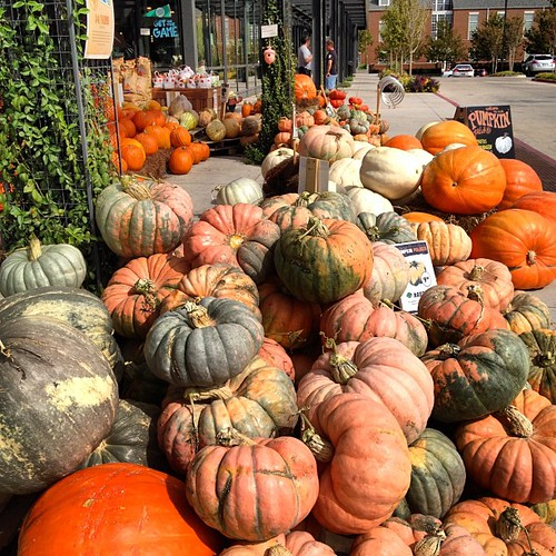 Whole Foods pumpkins