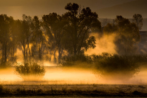 morning mist mountains fall fog sunrise colorado rocky steamboatsprings yampariver