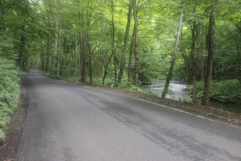 奥入瀬渓流の道
