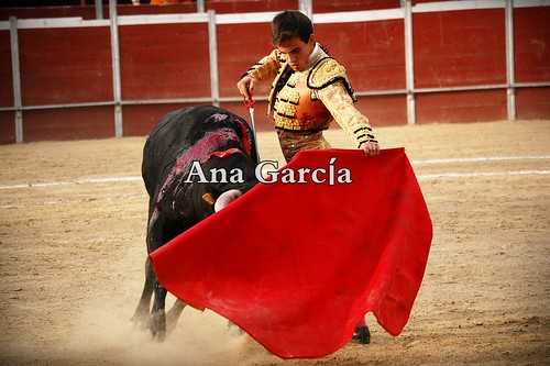Gonzalo19