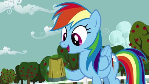 pony-beer-1