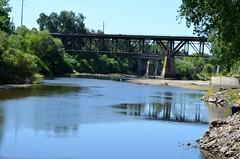 White Crane by Bridge
