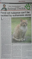 Ginga in the local paper
