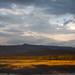 Lake Langano (Dani Free)