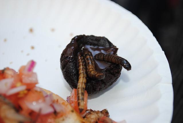 Bugfest 2012