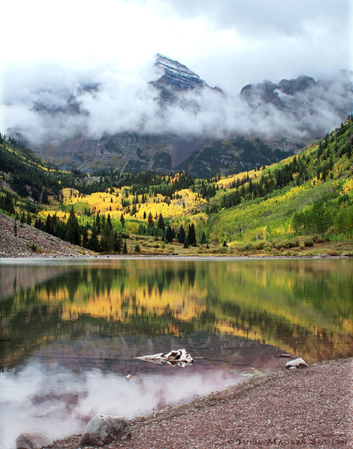 Famous Maroon Bells gives a brilliant fall display of Colorado aspens peaking in golden color.