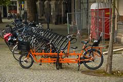 Maastricht - Vélo à 5 places