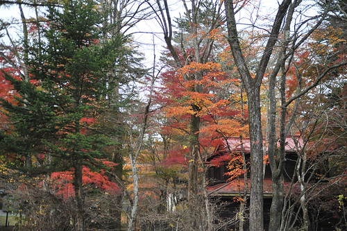 After Japan trip 2011 - day 8. Nagano. Karuizawa.
