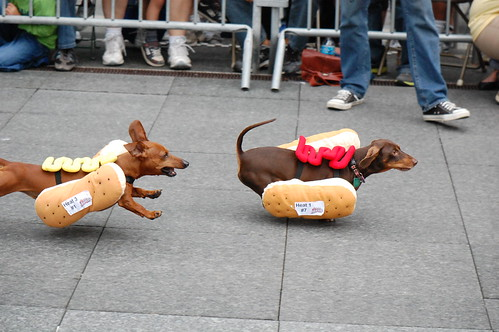 Running of the Weiners 2012