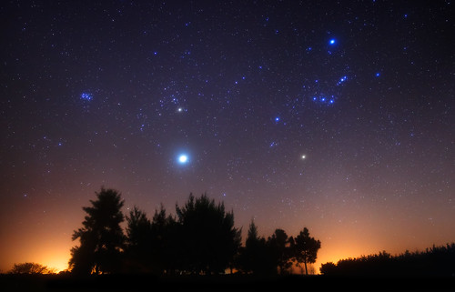 Orion and Jupiter over the Forest