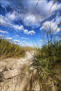 Kohler Andrae Dunes and Sky - Explore
