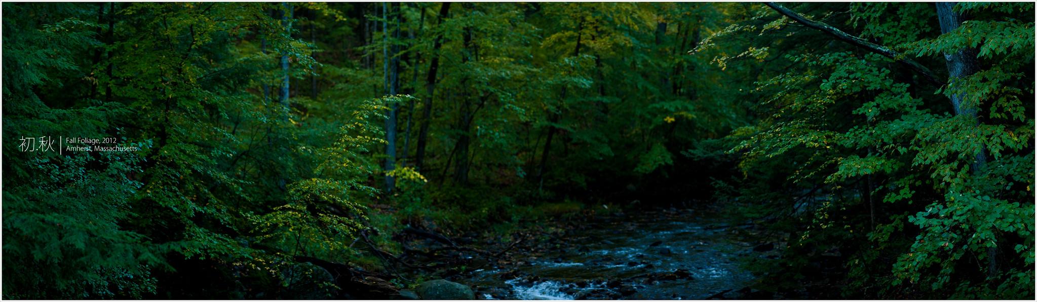 尋找秋天的痕跡