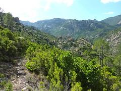 Entre Livisani et le col de la pointe 571 : vue globale du chemin