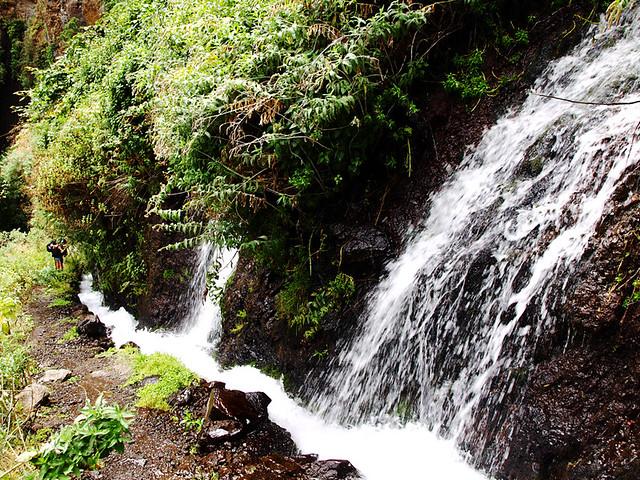 Marcos y Cordero Springs, La Palma