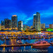 Bayside & Miami Skyline by Michael Pancier Photography