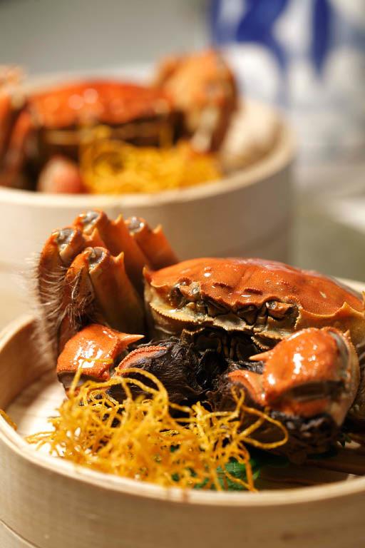 Hairy Crab 2-1.jpg