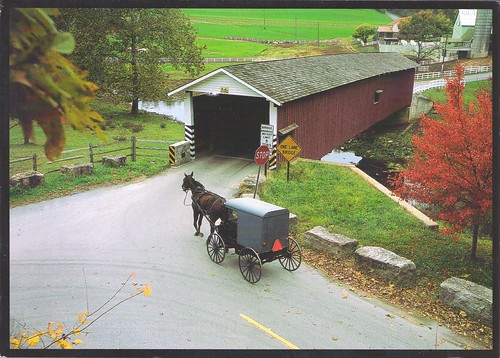 Amish Buggy & Jackson Mill Covered Bridge