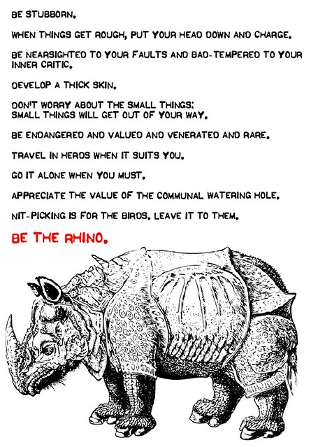 Rhino advice 20121001