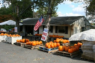 Fall Arrives At Matarazzo's in North Caldwell