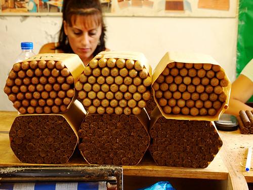 Cigars, Finca Tabequera el Sitio, Cigar Factory, Breña Alta, La Palma