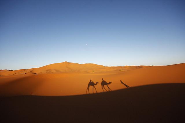 Trekking on Desert