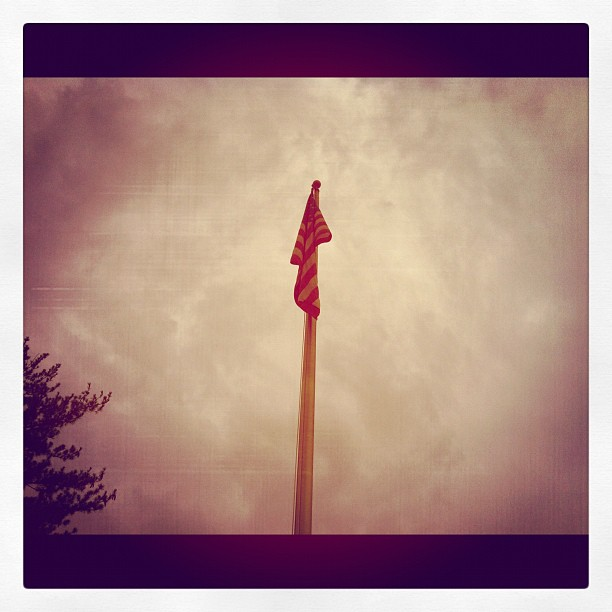 Up (flagpole) #photoadayagl