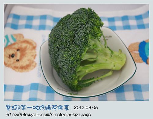 十個月全記錄_第一次吃綠花椰菜