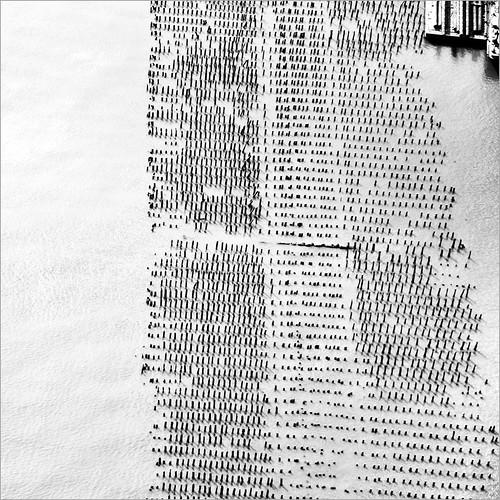 Hudson Pier by Dreamer7112