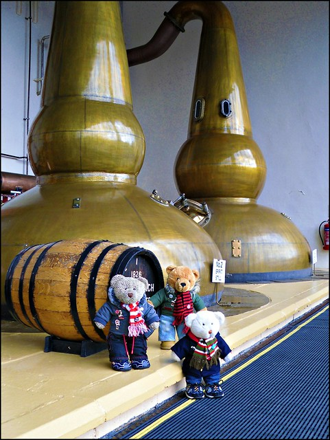 Glendronach whisky stills (and bears)