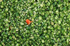 Hot chilli peppers  #green #red #chilli #hot #contrast