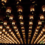 Lanterns in Henjyokutsu Cave - Daisho-In Temple, Miyajima