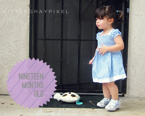 nineteen months old