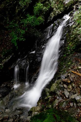 福養の滝 2012.7.8-5