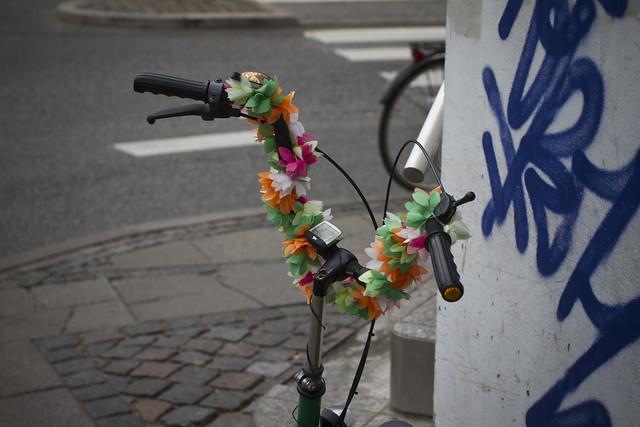 Copenhagen Floral