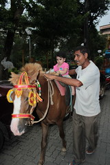 Nerjis Asif Shakir First Horse Ride 1 Year Old by firoze shakir photographerno1