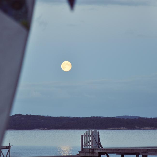 fest och fullmåne
