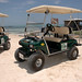 Boaz Golf Cart Rentals 2