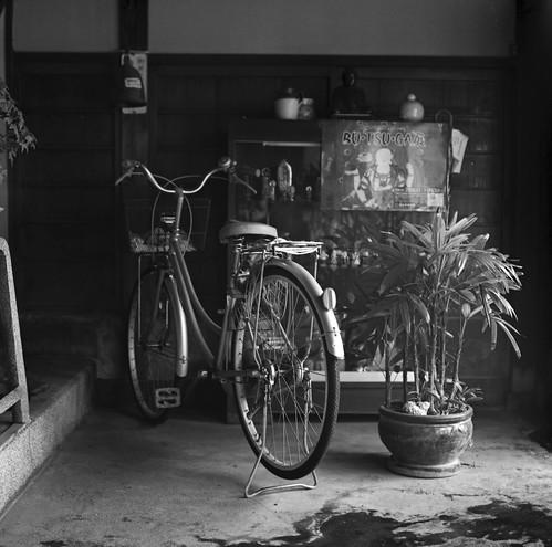 鎌倉的日常