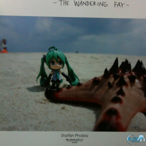 Best photo for The Wandering Fay