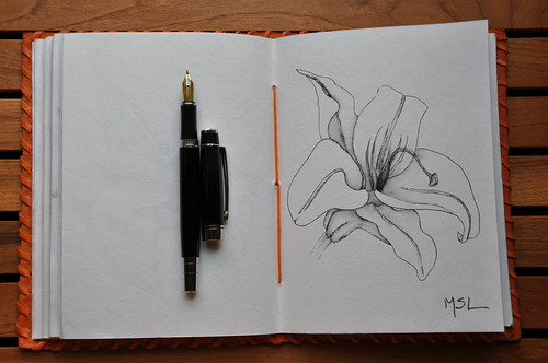 A Lily drawn with Hero 86 pen