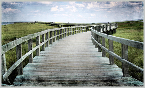 long and lonely boardwalk