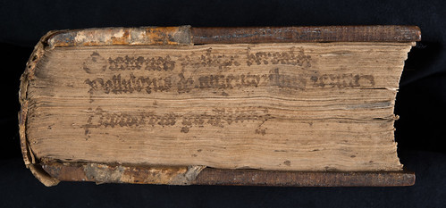 Manuscript fore-edge title on Vergilius, Polydorus: Proverbiorum libellus