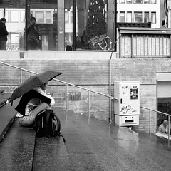 Dagens foto - 346: Make It Rain