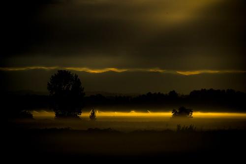 morning fog sunrise dawn shadows farming illumination inspirational irrigation sprinklers lightanddark goldenlight godlike